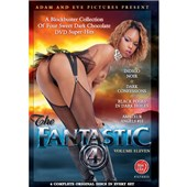 the fantastic 4 vol 11 dvd