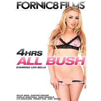 All Bush