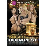 Females posed wearing lingerie displaying cleavage one night in budapest